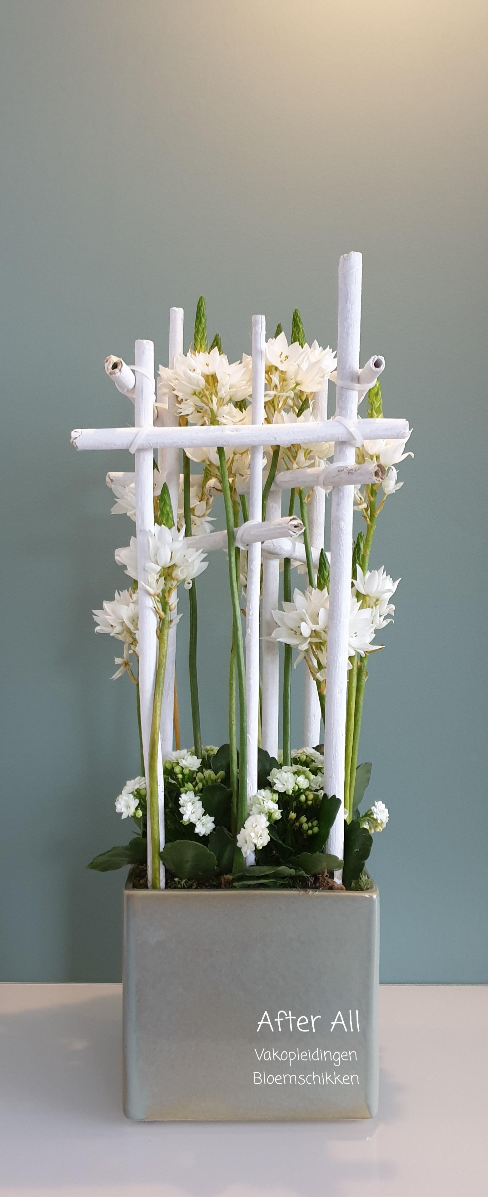 IB-113 | Moderne schikking met planten   Nicolle Boerma