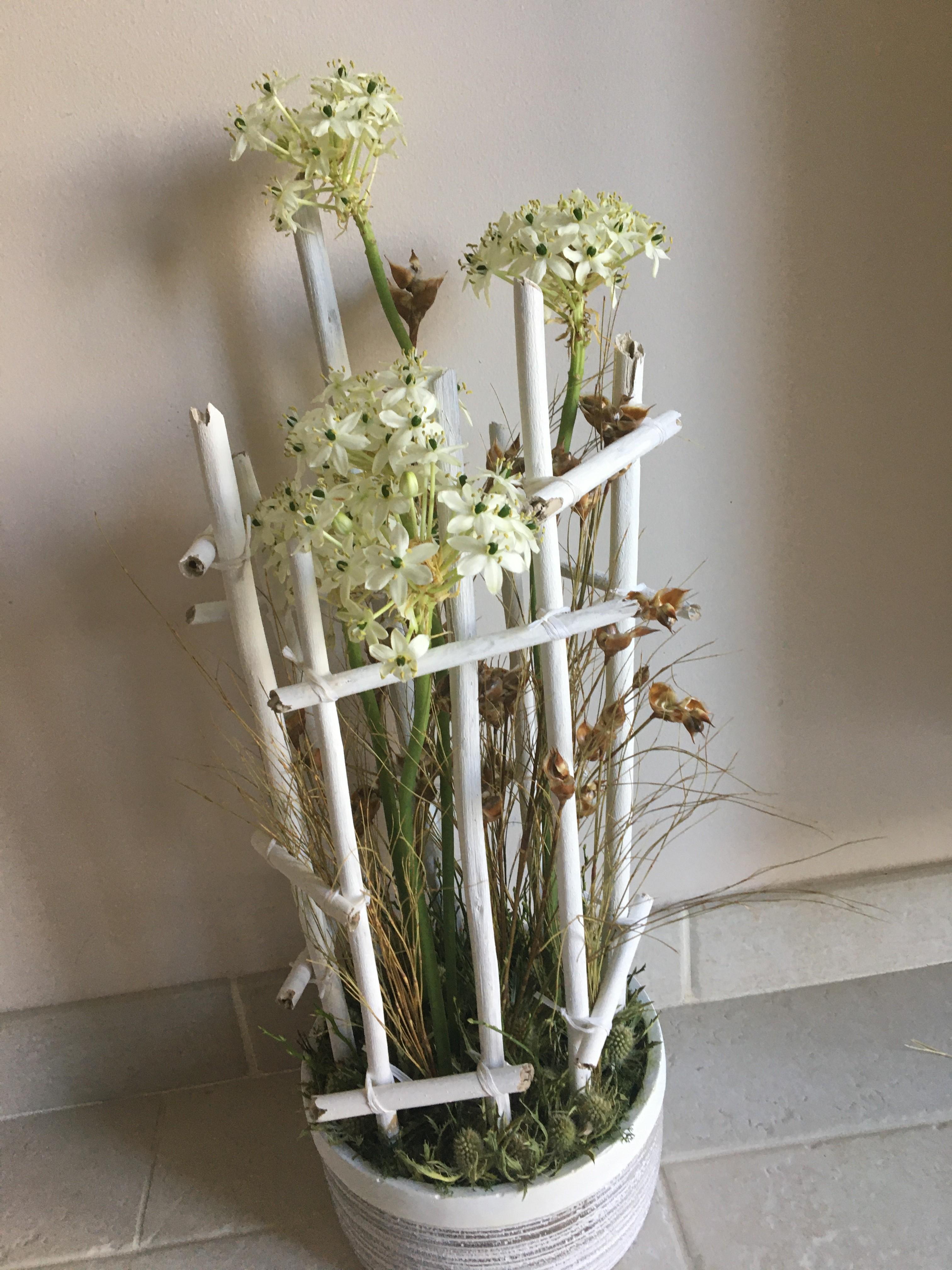 IB-113 | Moderne schikking met planten   Kristin M