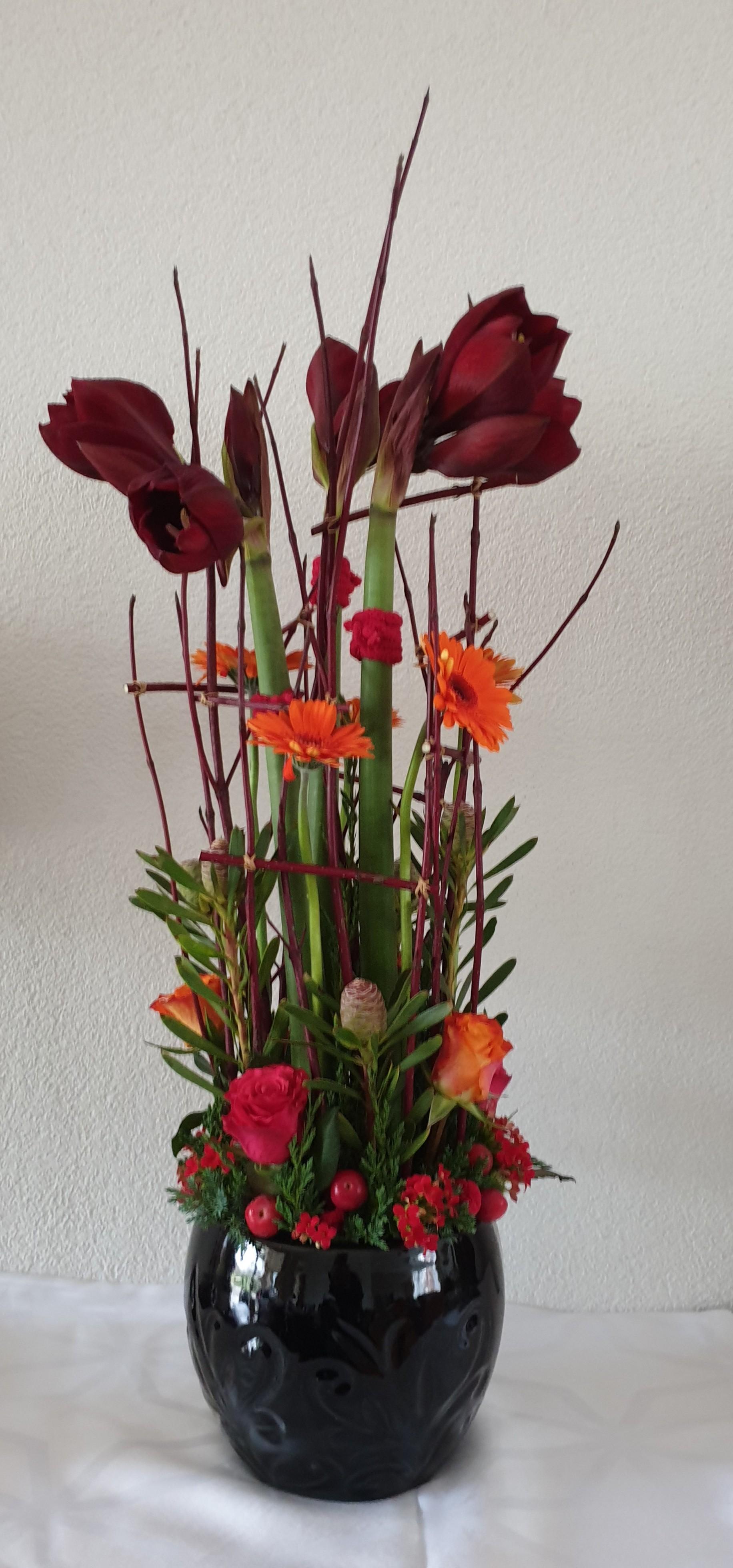 IB-050 | Amaryllis arrangement   Ine CR