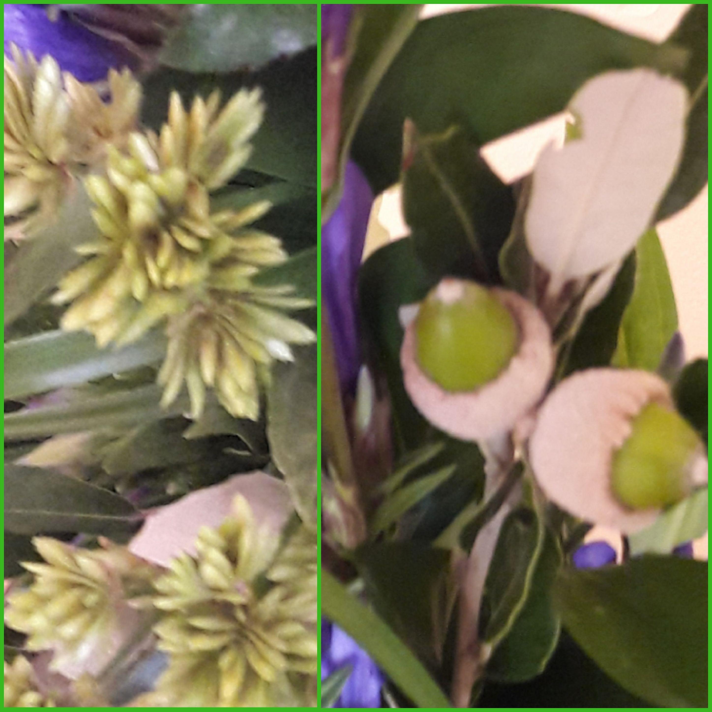 IB-008 | Mille-fleurs in oasis   Vlijtig liesje