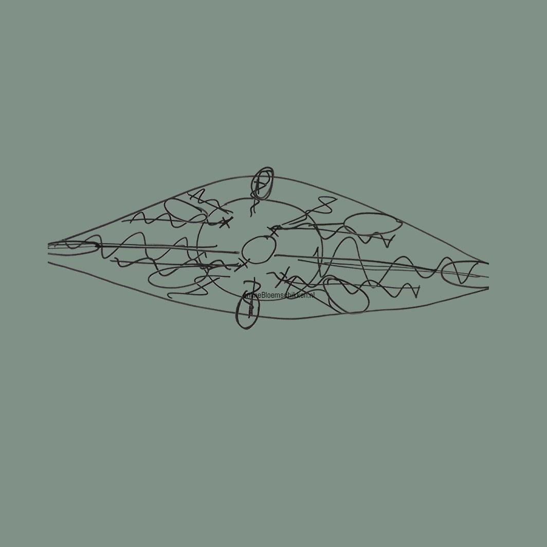 IB-002 | Vaas Cascade
