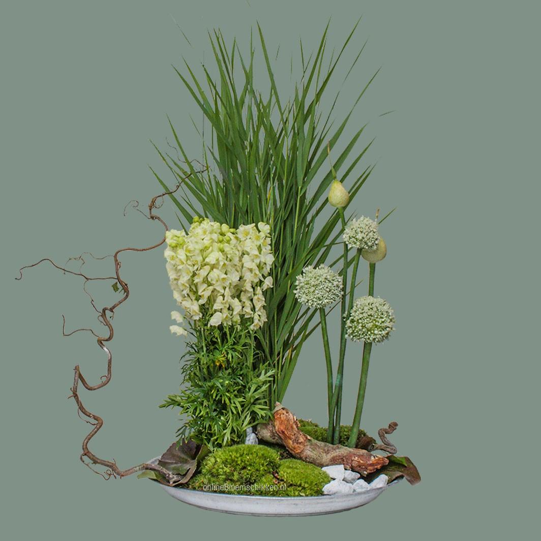 IB-071 | Vegetatief arrangement