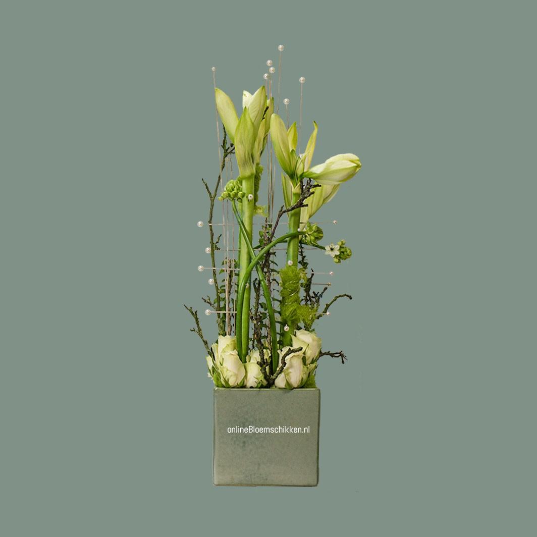 IB-050 | Amaryllis arrangement