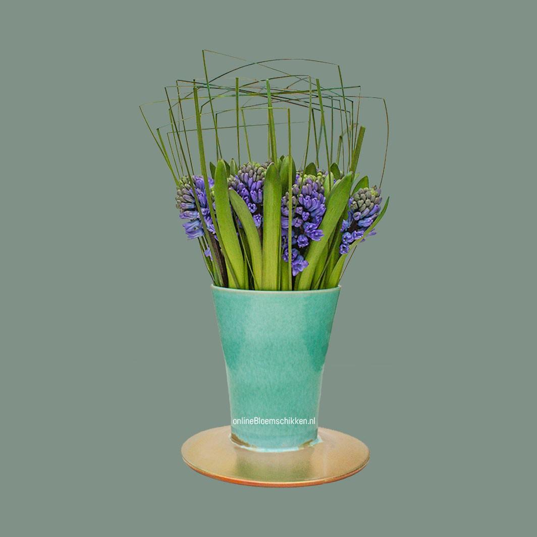IB-054 | Hyacinthen met steelgrass